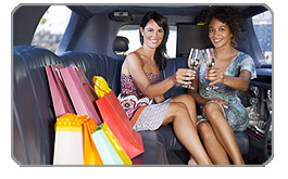 South San Francisco Shopping Limo Excursions